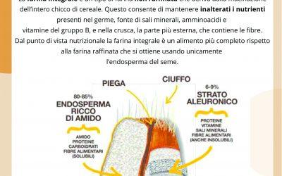 La farina integrale